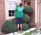 Gardener/Landscaping Dublin 0 8 5 1 0 1 2 7 5 0