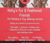 Home Boarding & Pet Care Services