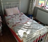 Single bed and sofa bed for sale