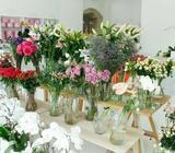 Flower Delivery Dublin | Florist Dublin | Cut Flower Shop Dublin FlowersDirect.ie