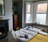 Bedroom for rent in house share 08