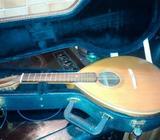 Portuguese mandolin