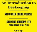 Online Introduction to Beekeeping Course