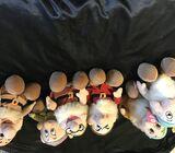 Disney dwarf soft toys (6)