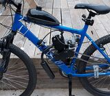 Motorised bicycle