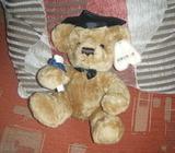 New Graduation teddy for sale