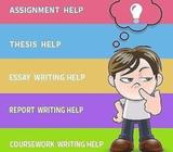 Irish #1 Essay Writing Help for Management and Nursing Students